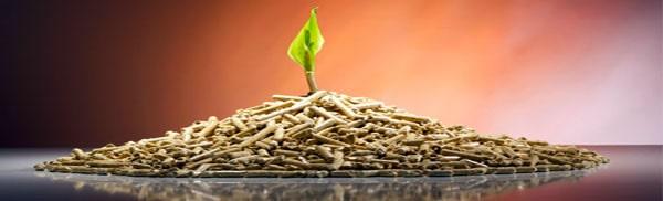 Экологичное древесное топливо