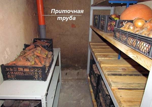 Проветривание подвального хранилища овощей