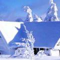 Дом в зимнем лесу
